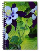 Triple Beauty Spiral Notebook