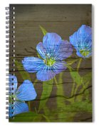 Triple Blues Spiral Notebook
