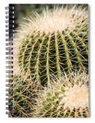 Triple Cactus Spiral Notebook