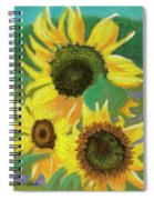 Triple Gold Spiral Notebook