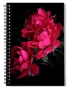 Triple Rose  Spiral Notebook
