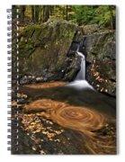 Triple Swirls Spiral Notebook