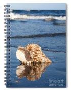 Triton Seashell Spiral Notebook
