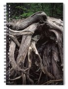 Troots Of A Fallen Tree By Wawa Ontario Spiral Notebook