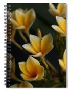 Tropic Welcome Spiral Notebook