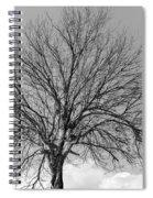Tropic Winter Spiral Notebook
