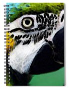Tropical Bird - Colorful Macaw Spiral Notebook