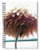 Tropical Dreaming  Spiral Notebook