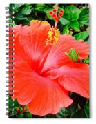 Tropical Explosion Spiral Notebook