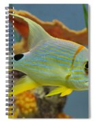 Tropical Fish Spiral Notebook