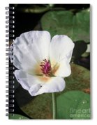 Tropical Flower Spiral Notebook