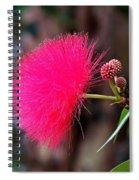Red Mimosa Flower Spiral Notebook