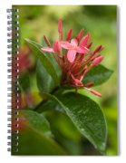 Tropical Flowers In Singapore Spiral Notebook