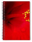 Tropical Hibiscus - Antigua Wind 01a Spiral Notebook