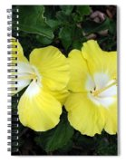Tropical Hibiscus - Bonaire Wind 01 Spiral Notebook