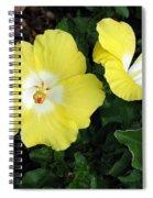 Tropical Hibiscus - Bonaire Wind 02 Spiral Notebook