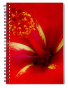 Tropical Hibiscus - Starry Wind 03a Spiral Notebook