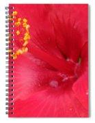 Tropical Hibiscus - Trinidad Wind 01 Spiral Notebook