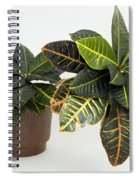 Tropical Houseplant Spiral Notebook