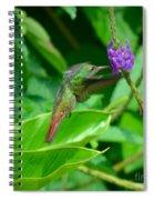 Tropical Hummingbird Spiral Notebook