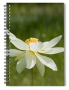 Tropical Lotus Flower Spiral Notebook