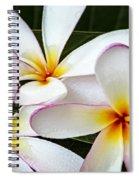 Tropical Maui Plumeria Spiral Notebook