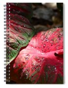 Tropical Rain - Botanical Art By Sharon Cummings Spiral Notebook