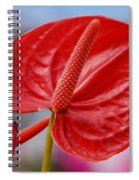 Tropical Red Anthurium Spiral Notebook