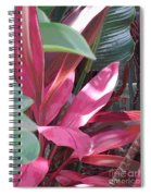 Tropical Spice Spiral Notebook