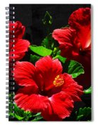 Tropical Trio Spiral Notebook