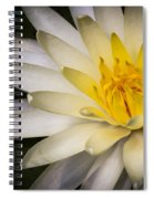 Tropical White Water Lily Spiral Notebook
