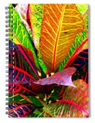 Tropicals Gone Wild Naturally Spiral Notebook