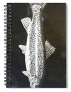Trout  Spiral Notebook