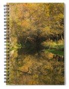 Trout Run Creek Fall 2 Spiral Notebook