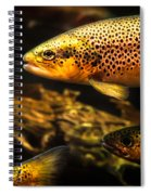 Trout Swiming In A River Spiral Notebook