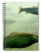 Trout Underwater Spiral Notebook