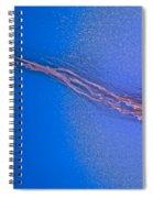 True Jelly Spiral Notebook