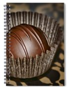 Truffle Spiral Notebook