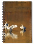 Trumpeter Ballet Spiral Notebook