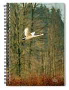 Trumpeters Five Spiral Notebook
