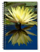 Truth Reflected Spiral Notebook