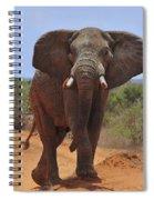 Tsavo Elephant Spiral Notebook
