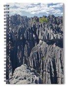 Tsingy De Bamaraha Madagascar Spiral Notebook