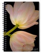 Tu-lamps Spiral Notebook