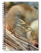 Tuckered Out Spiral Notebook