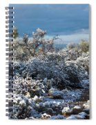 Tucson Covered In Snow Spiral Notebook