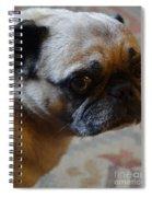 Tuffy 3 Spiral Notebook
