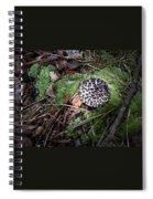 Tufted Mushroom Showing Spiral Notebook