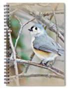 Tufted Titmouse - Baeolophus Bicolor Spiral Notebook