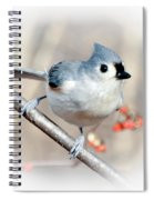 Tufted Titmouse Love  Spiral Notebook